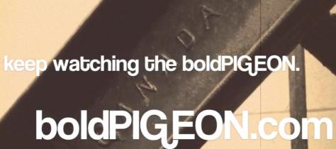 KEEP WATCHING THE BOLD PIGEON